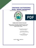 ZAO DE AGUIAR-20101104-110155.pdf