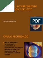 5. Desarrollo y Crecimiento del Embrion y del Feto.ppt