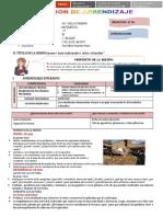 sesion lunes 7 agosto  lectura del temblor (2).docx