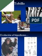 TOBILLO.pdf