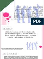 Norma Oficial Mexicana Nom-007-Ssa2-2016, Para La Atencion