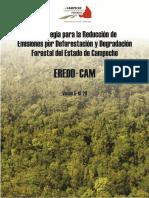 Estrategia para la Reducción de Emisiones por Deforestación y Degradación Forestal del Estado de Campeche
