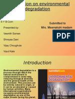 environmentaldegradation-110818024312-phpapp02