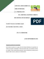 Universidad Politecnica Mesoamericana