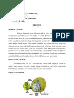 Lisosom & s.endomembran-biosel