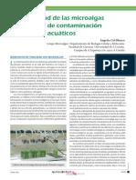 Microalgas y Contaminacion Acuatica