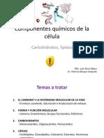 Te_2._Biomoleculas_carbohidratos_lipidos_2014II.pdf