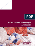 Salt Technologies.pdf