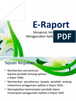 E-Raport