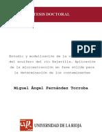 Dialnet-EstudioYModelizacionDeLaContaminacionDelAcuiferoDe-105