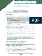 Photosynthesis.worksheet.2.Key
