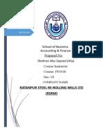 FIN340 Term Paper