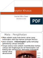 Reseptor Khusus