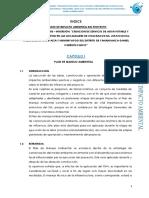 Estudio de Impacto Ambiental Yanahuanca