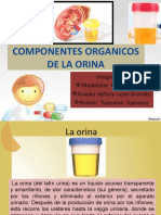 Componentes Organicos de La Orina