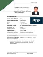 Jhussan Curriculum Vitae - Postulacion 2017 Ica