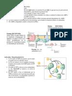 Bioseñalizacion Foro Resumen