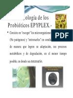 Apliacaciones Probioticos Avicola