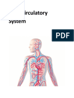 8 Circulatory System Lesson.docx