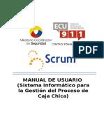 Modelo Manual Usuario.docx