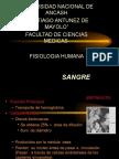 fisiopatologia de la sangre