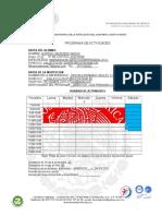 PROGRAMA-DE-ACTIVIDADES-1.doc
