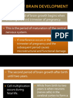 Stages of Brain Development Ppt by Melf