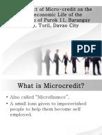 Impact of Granting Microcredit
