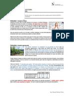 01l - Programacion Entera (Problemas) (2)