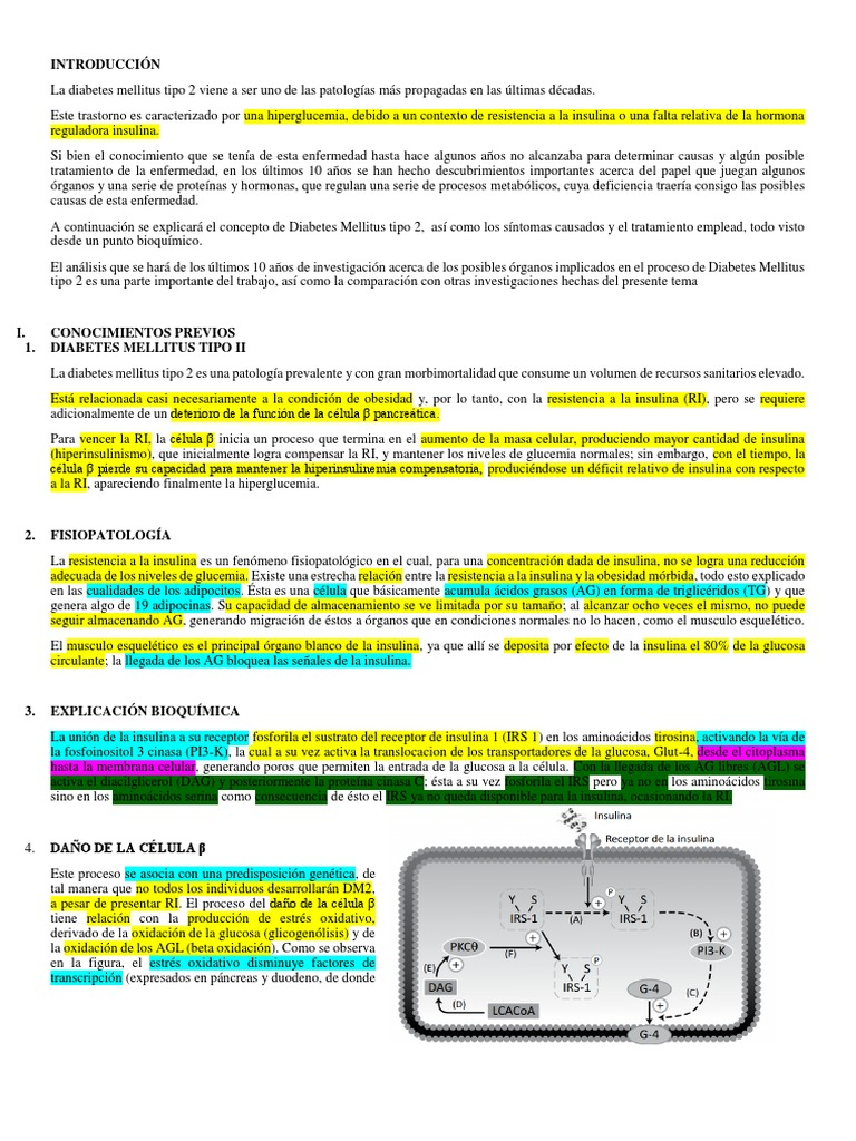 fisiopatologia de la diabetes mellitus tipo 1 pdf