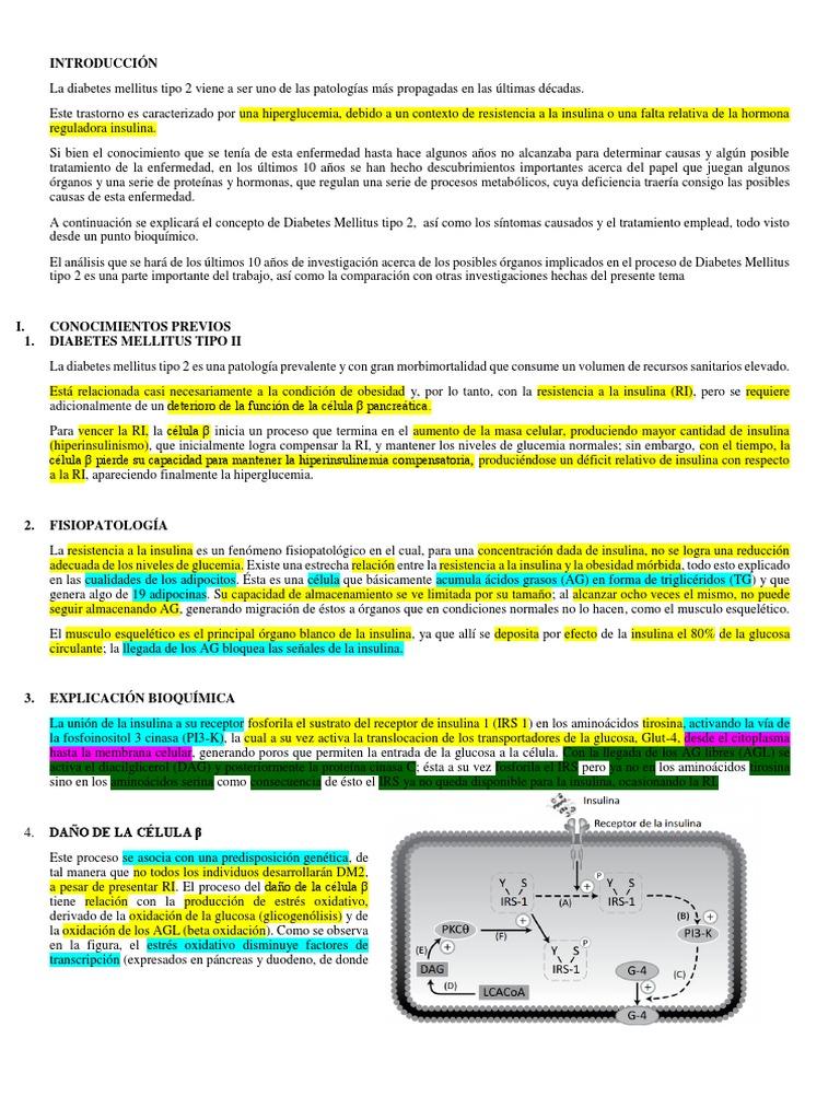procesos fisiopatológicos para la diabetes tipo 2