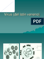 Virus microbiologia