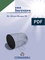 Burgos Alvaro-La pena sin barrotes.pdf