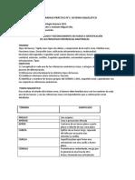 997093397.Trabajo PrácticoN°1 Sistema Esquelético..pdf
