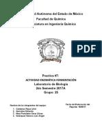 ACTIVIDAD ENZIMÁTICA FERMENTACIÓN