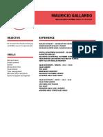 MG Resume (Mauricio Gallardo)