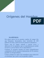 2. Origenes del Hombre.ppt