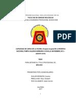 TESIS 28 de Noviembre.pdf
