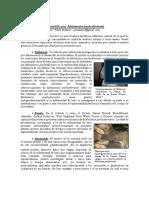 Dermatitis Por Malassezia Manzuc
