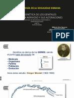 8. Genétic y Genit. SNC y Alteraciones