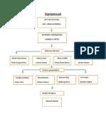 Organigrama poli (2).docx