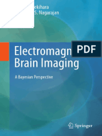 Book_Electromagnetic Brain Imaging.pdf