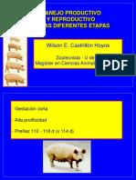 Gestación Urabá 2011 - 2