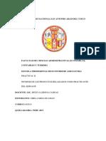 Informe Final de Poyentimari