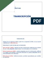 Clase 16 Transcripcion