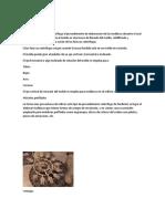 COLADA CENTRIFUGA.docx
