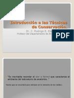 01 Introduccion a Las Técnicas de Conservación