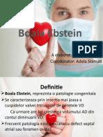 Boala Ebstein