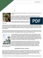 Rhodiola for men.pdf