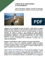 Perros y Gatos Cuidan de Tu Salud Mental - Amigos Peludos Con Beneficios